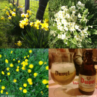 Duvel Tripel Hop: taste of Spring